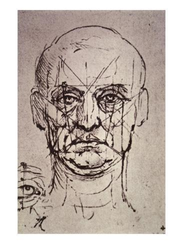 Proportions of the Face Giclee Print