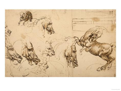 Rearing Horse and Study of Horse, Lion and Human Heads, Drawing, Royal Library, Windsor Giclee Print