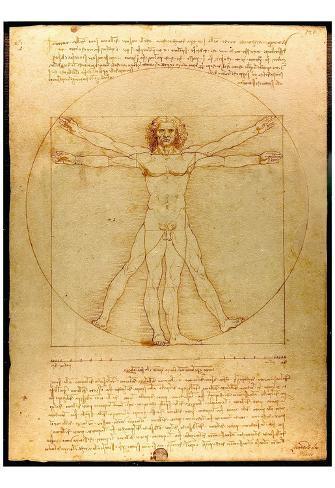 Leonardo Da Vinci (Vitruvian Man) Art Poster Print Poster