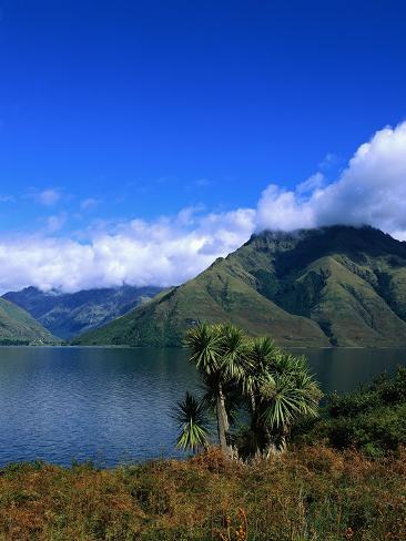 Lake Wakatipu and Mount Hector Photographic Print
