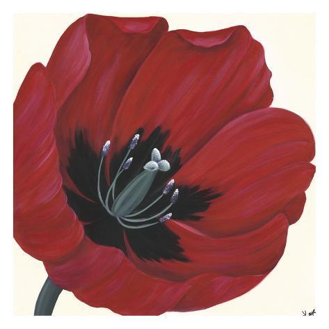 Crimson Passion Art Print