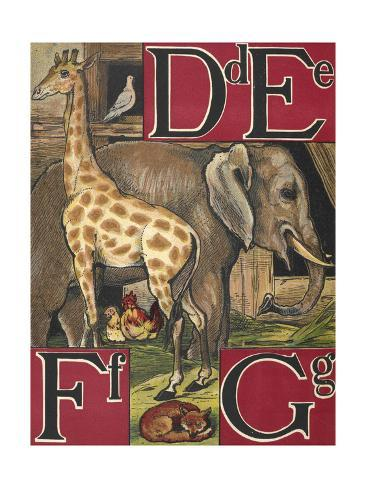 Letters D, E, F and G. D For Dove. E For Elephant. F For Fox and Fowls. G For Giraffe Stretched Canvas Print