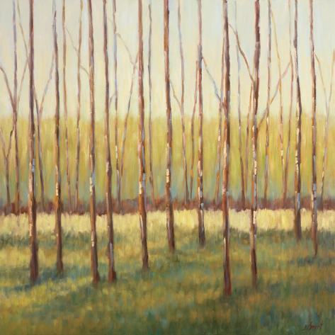 Grove of Trees Art Print