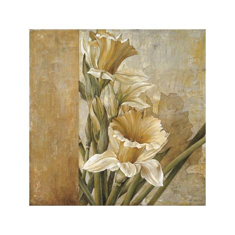 Champagne Daffodils II Giclee Print