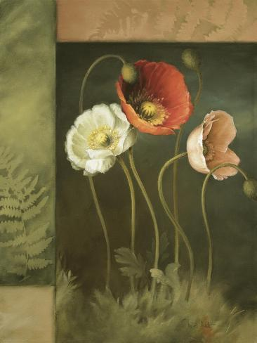 Designer Poppies Giclee Print