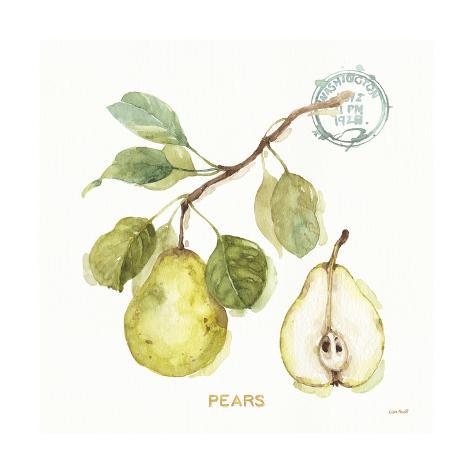 My Greenhouse Fruit I Art Print