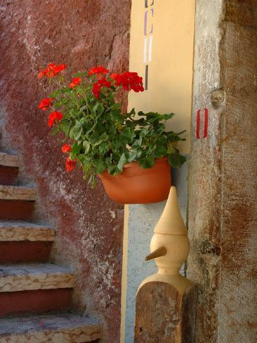 Private Staircase with Flowerpot, Malcesine, Italy Photographic Print