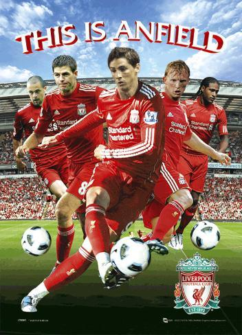 Liverpool - Players 10/11 3 Dimensional Poster