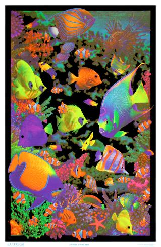 Living reef flocked blacklight poster art print poster su for Poster psichedelici