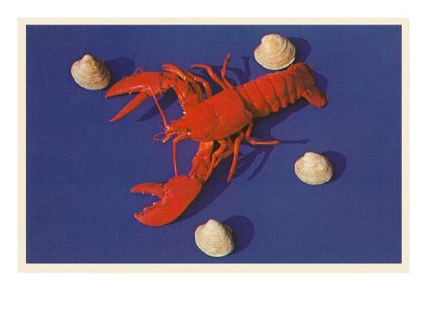 Lobster and Shells Stretched Canvas Print