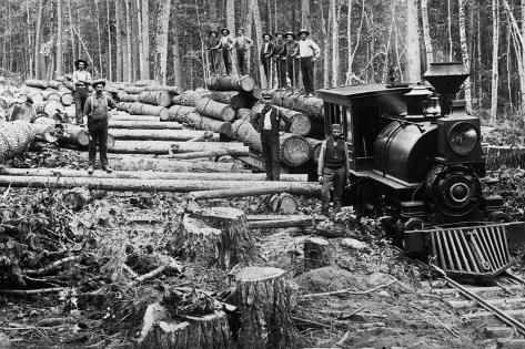 Loggers and Logging Locomotive Valokuvavedos