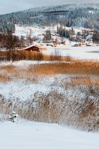Snow Covered Winter Landscape Near The Gulf Of Bothnia Bottenviken In Northern Sweden