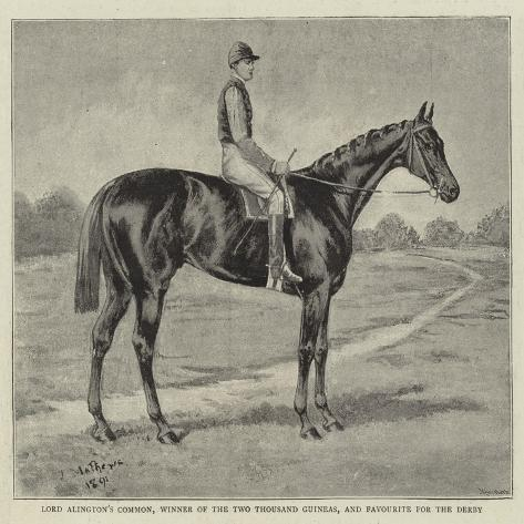Lord Alington's Common, Winner of the Two Thousand Guineas ...