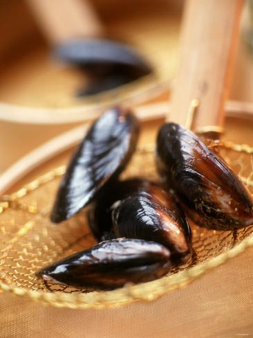 Mussels in a Basket Photographic Print