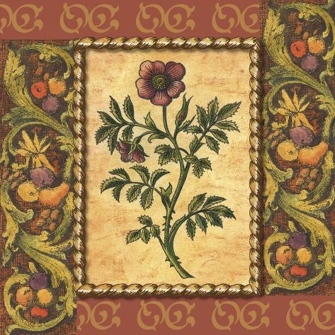 Victorian Floral II Art Print