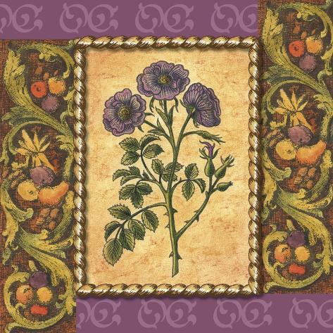 Victorian Floral III Art Print