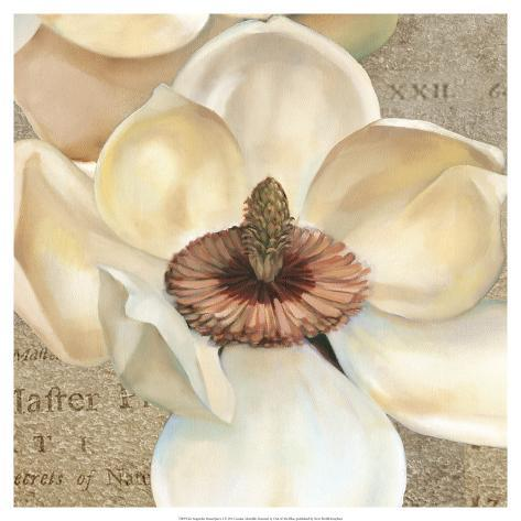 Magnolia Masterpiece I Art Print