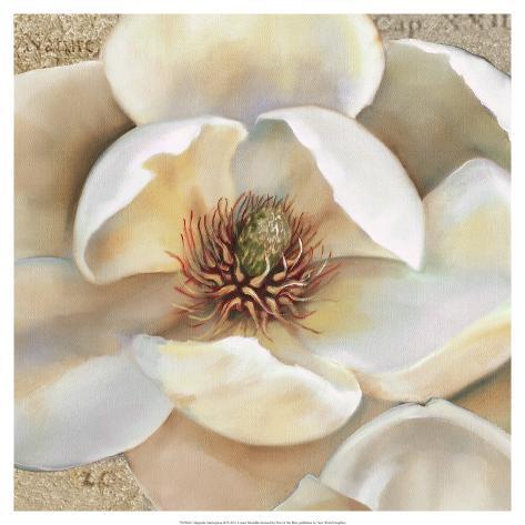 Magnolia Masterpiece II Art Print