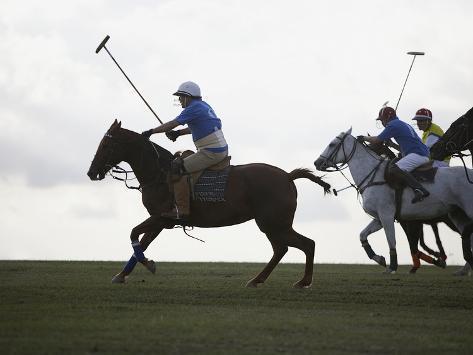 Polo game Photographic Print