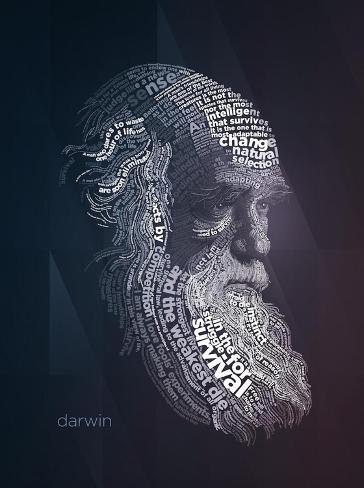 Charles Darwin Typography Quotes Pósters por Lynx Art Collection en ...