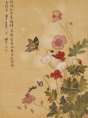Corn Poppy and Butterflies, 1702 Giclee Print