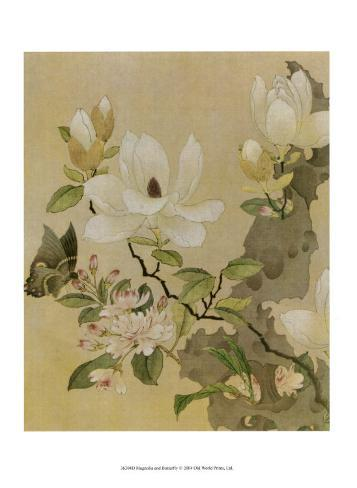 Magnolia and Butterfly Art Print