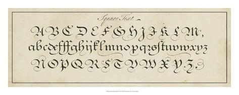 Manuscript Sampler III Giclee Print