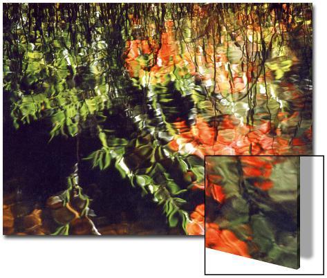Reflections, West Fork of Oak Creek, Sedona, Arizona, USA Art on Acrylic