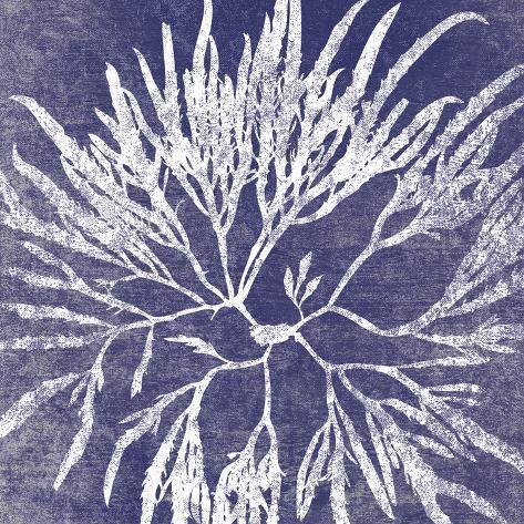 Reef I Impressão giclée