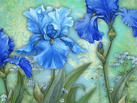 Irises Stampa giclée