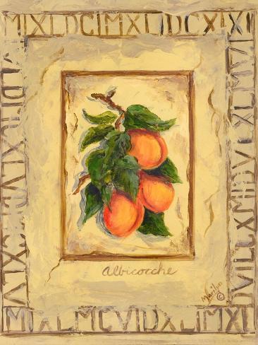 Italian Fruit Apricots Art Print
