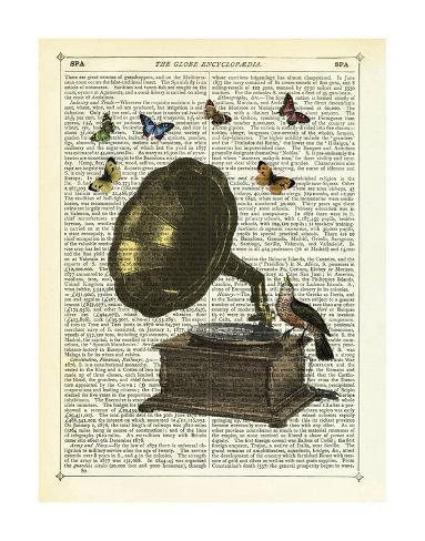 Gramophone, Bird & Butterflies Art Print