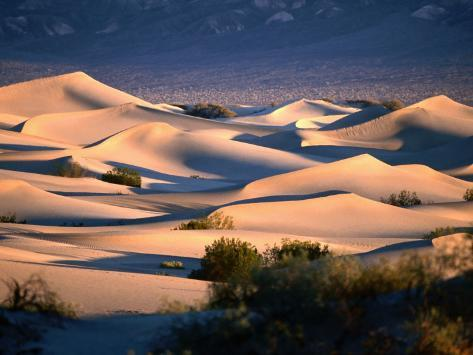 Stovepipe Wells Dunes, Death Valley National Park, California Photographic Print