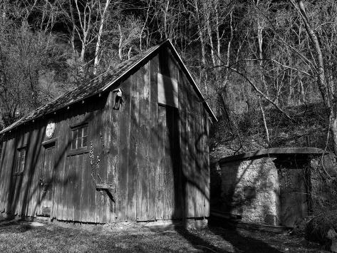 The Wood Shed Taidevedos