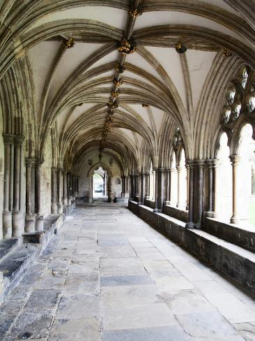 Norwich Cathedral Cloisters, Norwich, Norfolk, England, United Kingdom, Europe Photographic Print