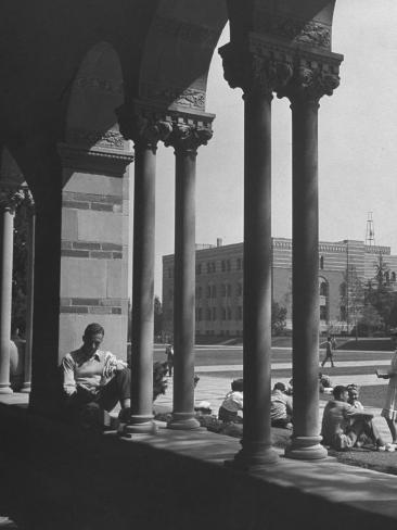 Students Studying on a Spring Day at the UCLA Campus Photographic Print