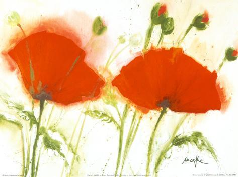 poppies in the wind - photo #19