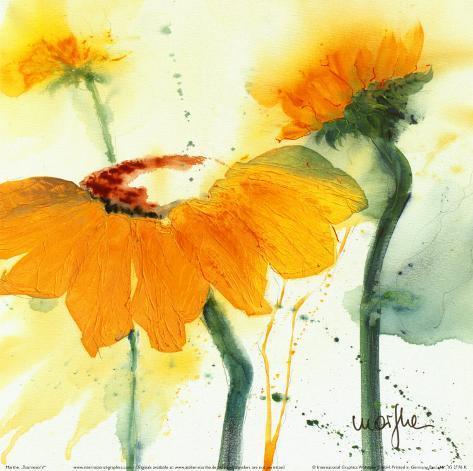 Sunflower V Art Print