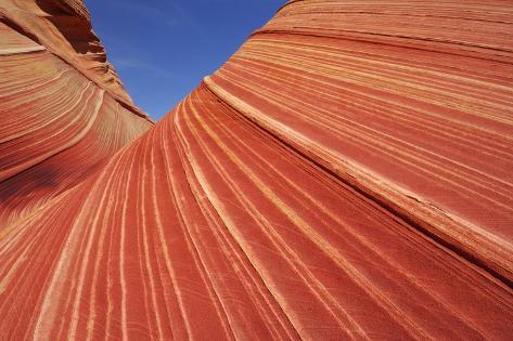 Paria Canyon-Vermilion Cliffs Wilderness Photographic Print