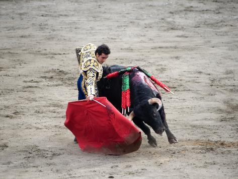 Matador and a Bull in a Bullring, Lima, Peru Photographic Print