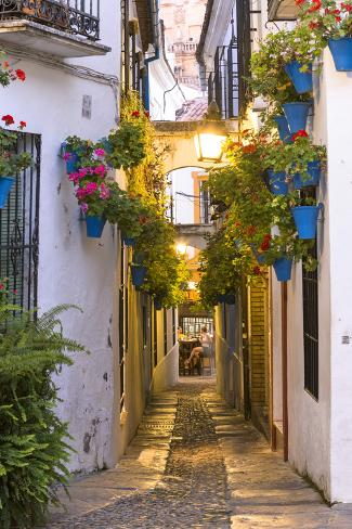 Spain, Andalusia, Cordoba. Calleja De Las Flores (Street of the Flowers) in the Old Town, at Dusk Lámina fotográfica