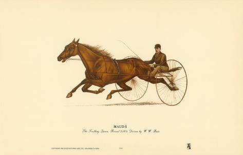 Mauds Art Print