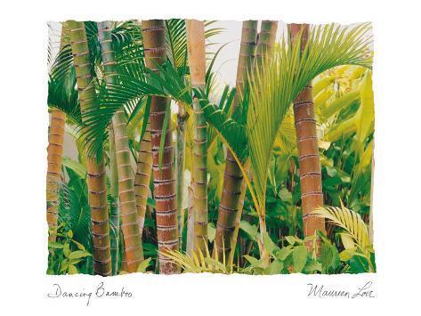 Dancing Bamboo Photographic Print