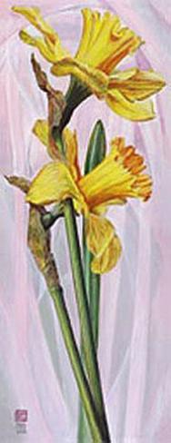 Two Yellow Daffodils Art Print