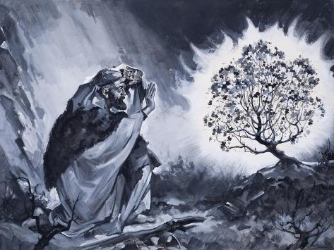 Moses and the Burning Bush Lámina giclée