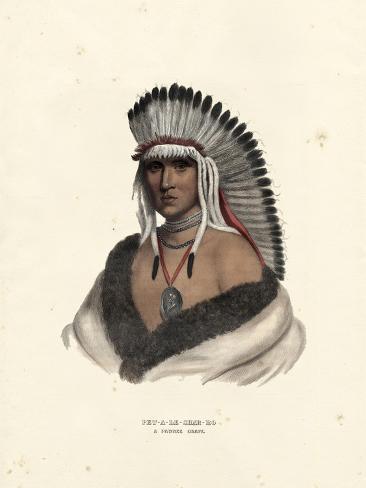 Pawnee Brave Art Print