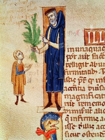 Medicinal Plants, Illustration from Traite de Medecine by Claudius Galenus Lámina giclée