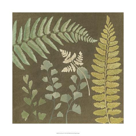 Earth & Fern II Giclee Print