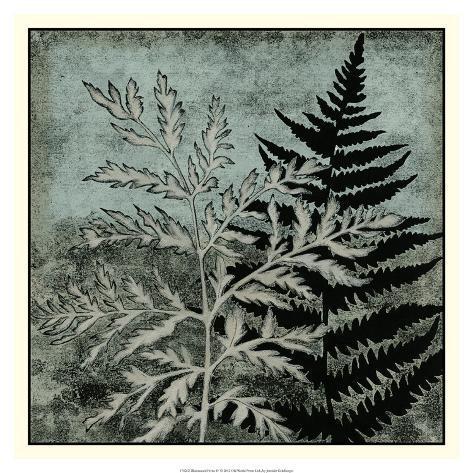 Illuminated Ferns IV Giclee Print