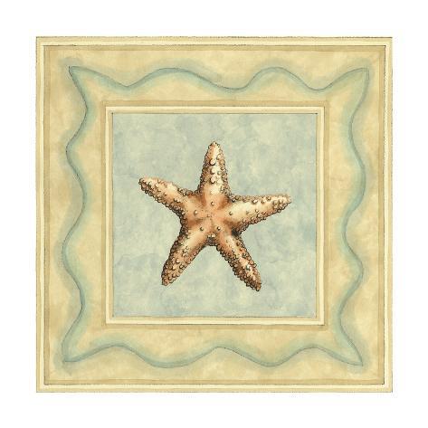 Shell Collector III Art Print